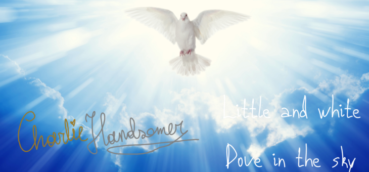 Charlie Handsomer – Little and white dove in the sky